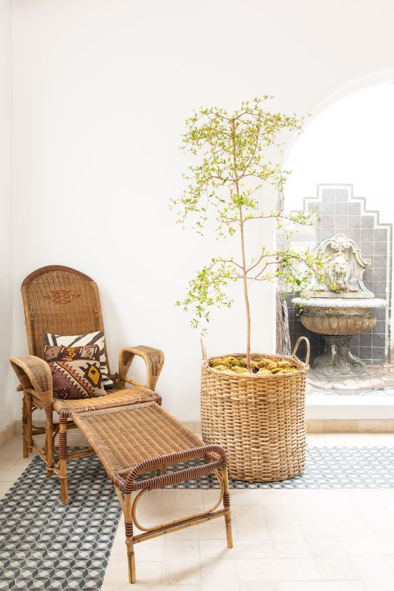 a neutral relaxing space with a wicker lounger and an olive tree in a basket with moss feels modern and Mediterranean