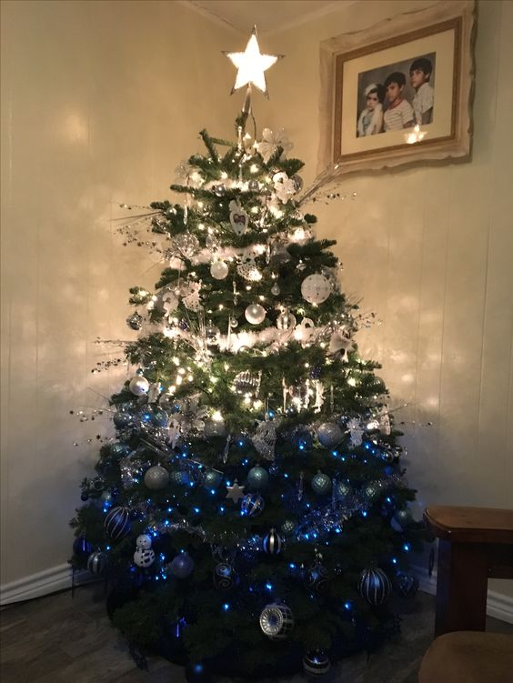 an ombre Christmas tree from white to silver nd bold blue, many lights and a shiny star on top will make an impression