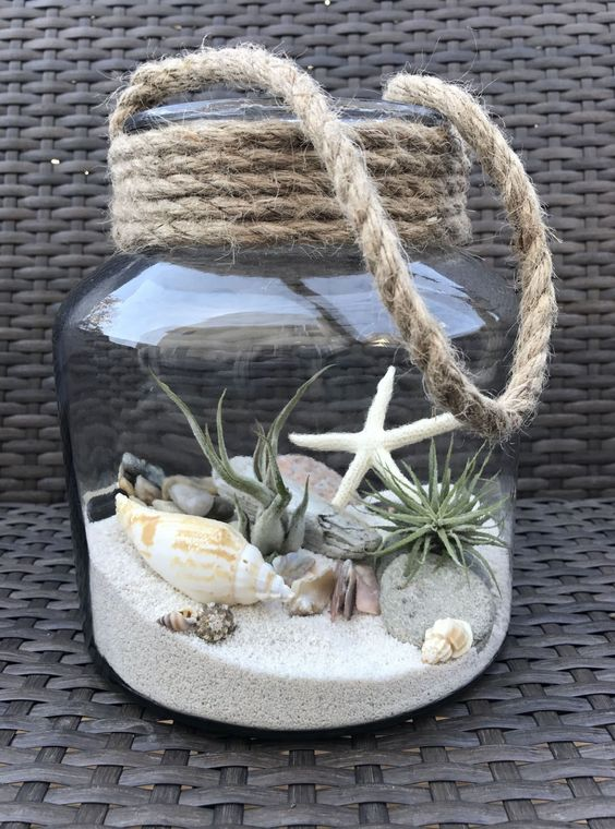a large jar with a beach scene with sand, rocks, driftwood, air plants and seashells plus rope