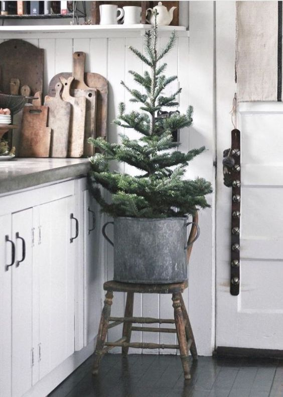 simple placing of a Christmas tree into a galvanized bucket is also ok, no decor is needed