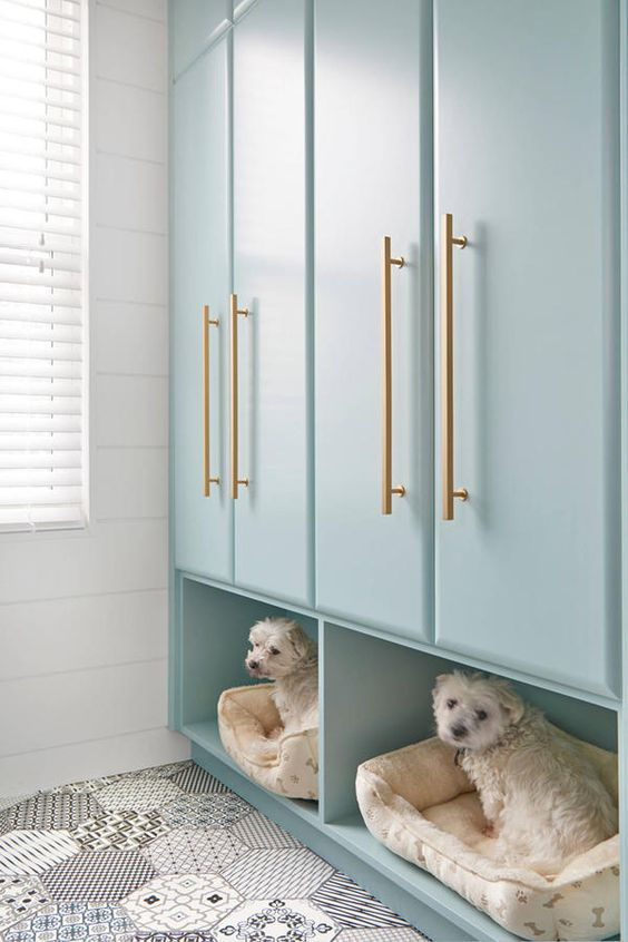 aqua colored laundry room wardrobes with pet beds underneath for comfort and a cool look