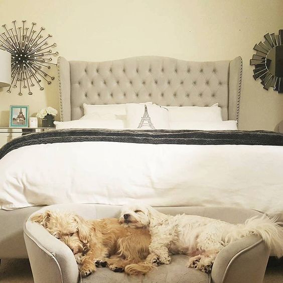 a little upholstered bench or couch can be used by your pets for sleeping easily