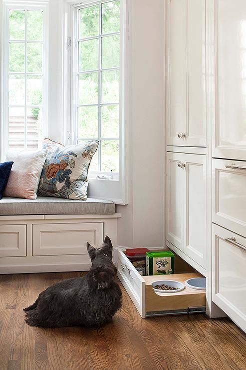 a drawer with a pet feeding station and some dog food stored here, too, is a very comfy idea