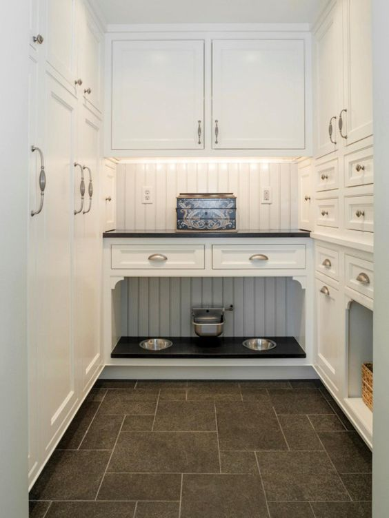 a kitchen cabinet with an incorporated pet food station and comfy bowls