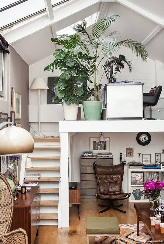 potted plants and rugs help creating a cozy feel in the space and make it welcoming