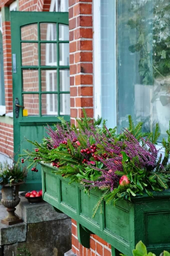 an English farmhouse style emerald window box with berries, fruits and flowers wows at once