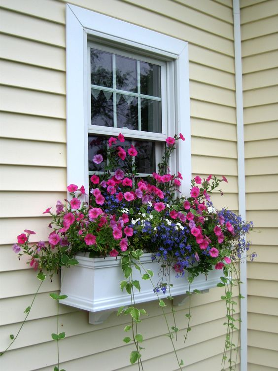 a small white window box with bright pink and purple blooms and cascading greenery will add a colorful touch