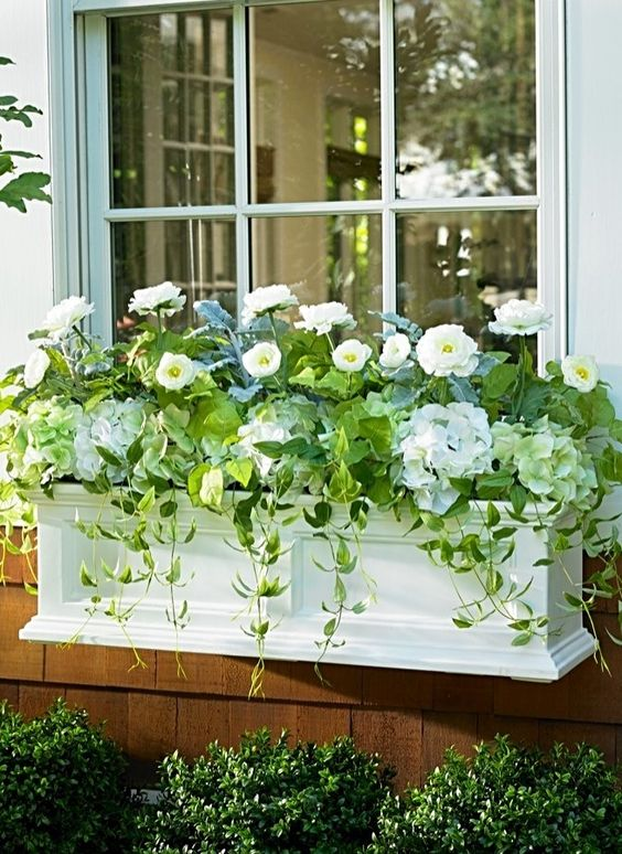 a chic white window box planter with white flowers and cascading greenery brings ultimate elegance