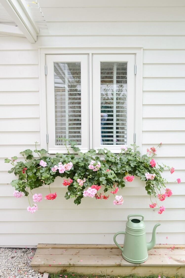 a white window box planter on a white wall looks invisible, especially with cascading flowers