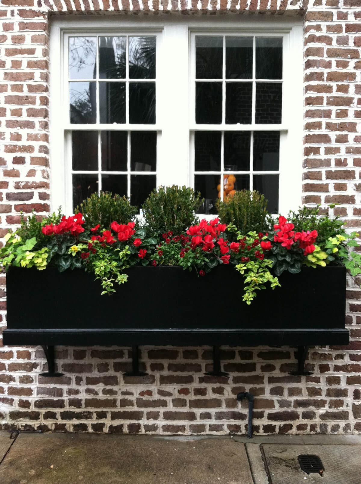 a traditional black wooden box planter with bright flowers, greenery and foliage for a bold look
