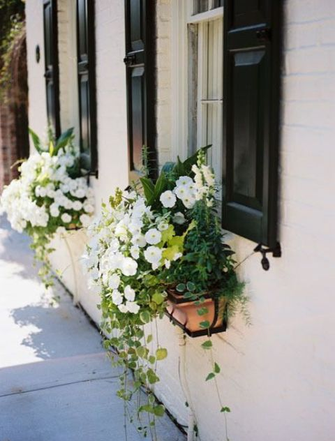 little wooden window box planters with lush white blooms, foliage and cascading greenery look chic