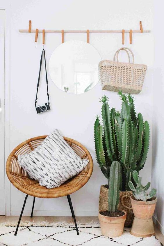 potted cacti will be a nice idea for a boho or desert entryway space, they look spectacular