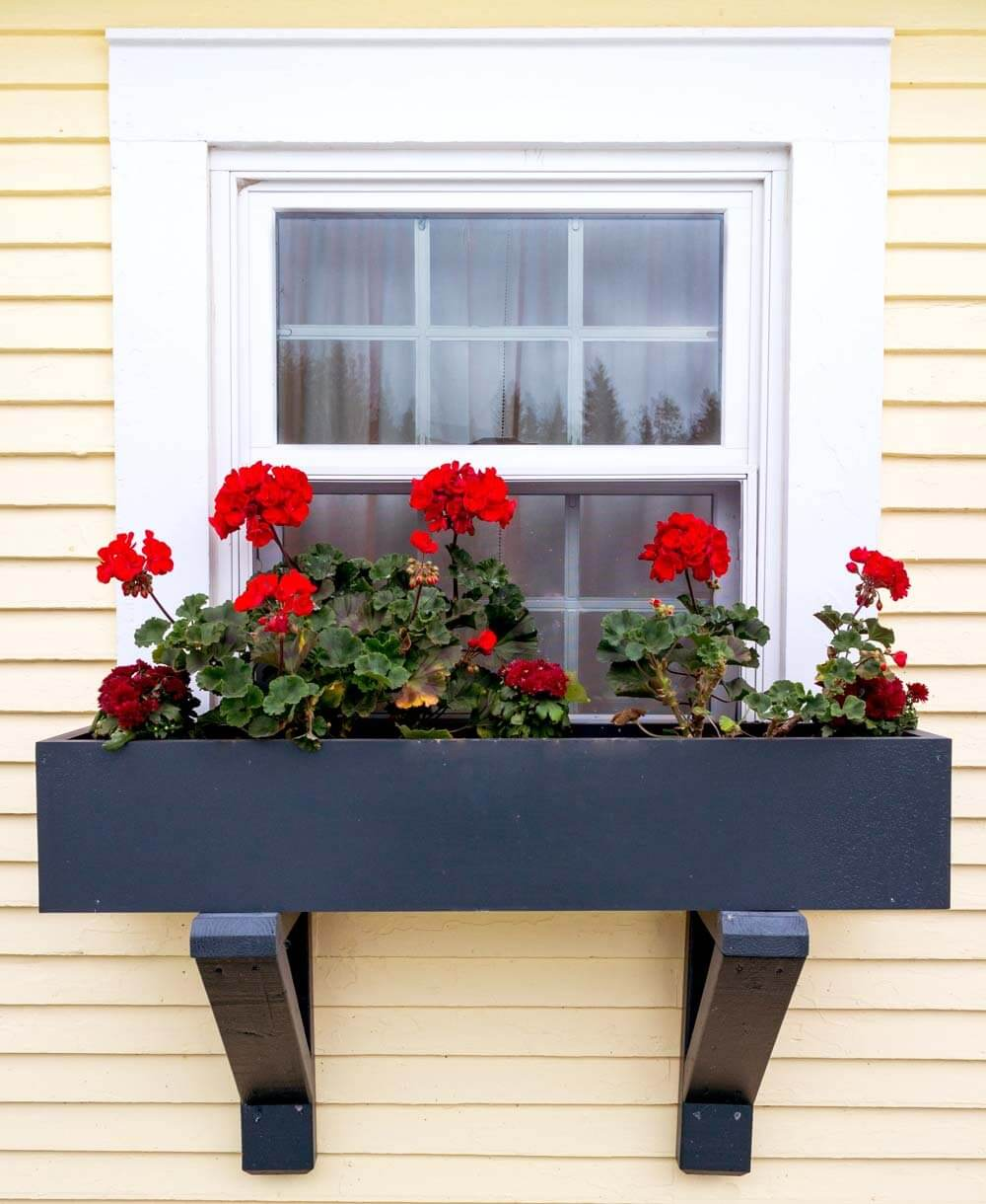 a blackened metal window box with black semigloss finish and bold red blooms for a statement