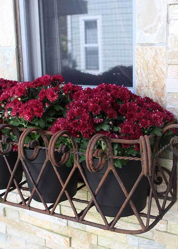 a decorative iron window box for potted plants allows you changing the plants and blooms when you want