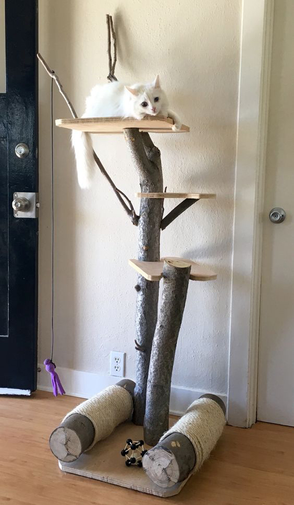a mini cat tree with trunks and shelves and a duo of scratchers under it looks very natural  and fresh