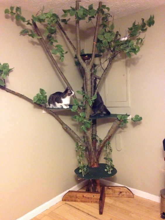 a classic-looking cat tree of branches and trunks and fake greenery plus some spaces to jump on