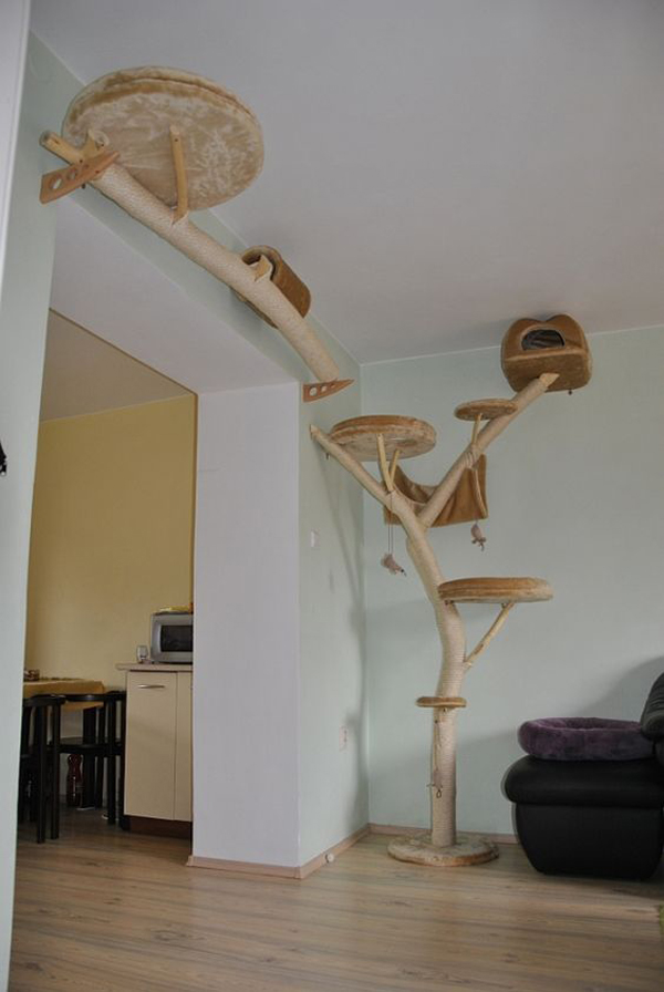 a cat tree of branches covered with yarn and with round upholstered platforms goes up to the wall