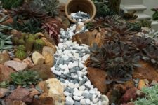 09 a gorgeous dry creek bed with grey and white pebbles and large rocks that line up the creek plus succulents and cacti