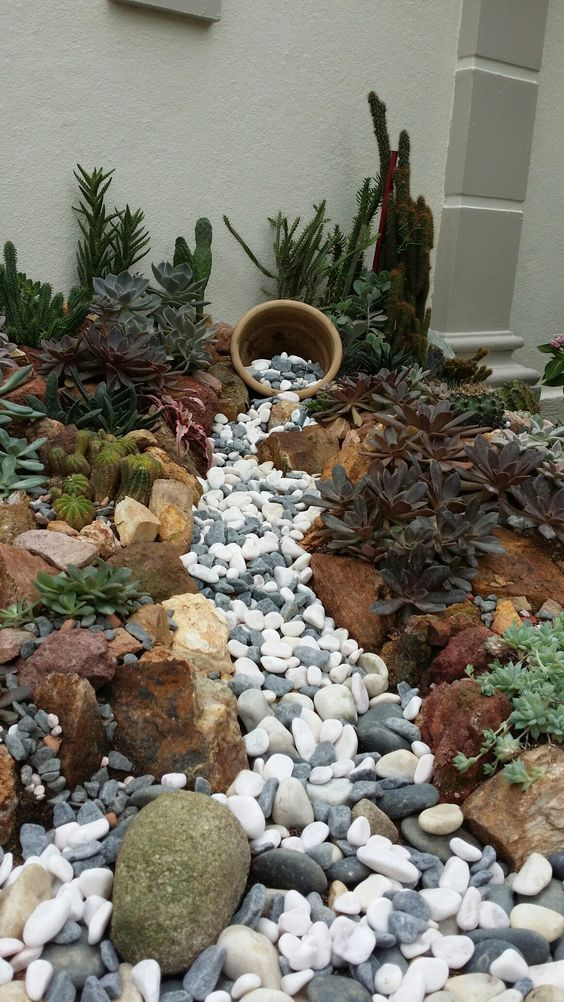 a gorgeous dry creek bed with grey and white pebbles and large rocks that line up the creek plus succulents and cacti