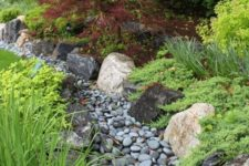 11 a dry stream covered with grey pebbles and with grasses and greenery around for a catchy look