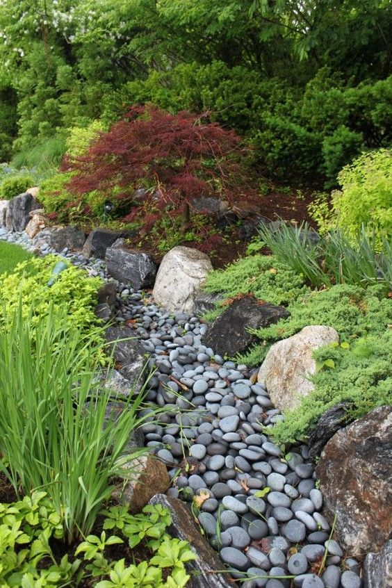a dry stream covered with grey pebbles and with grasses and greenery around for a catchy look