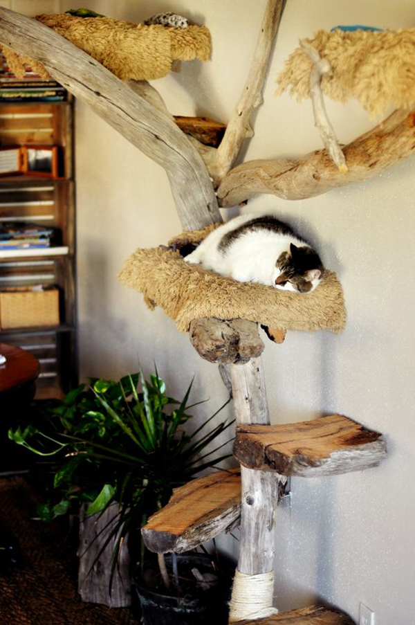a traditional cat tree of trunks and branches attached to each other with rope and spruced up with faux fur