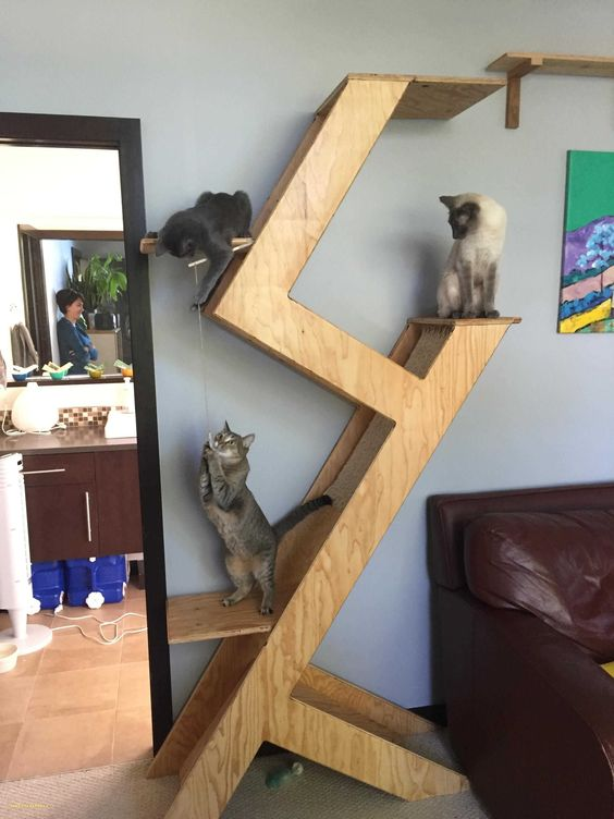 a minimalist plywood cat tree with several platforms and scratchers plus some cat toys hanging for a modern home