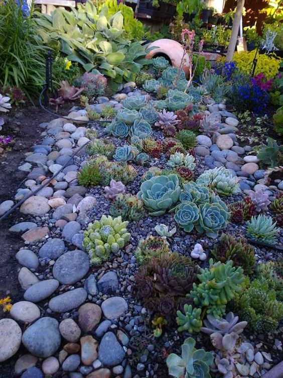 mix up various succulents with larger and smaller pebbles and rocks for a more natural landscape