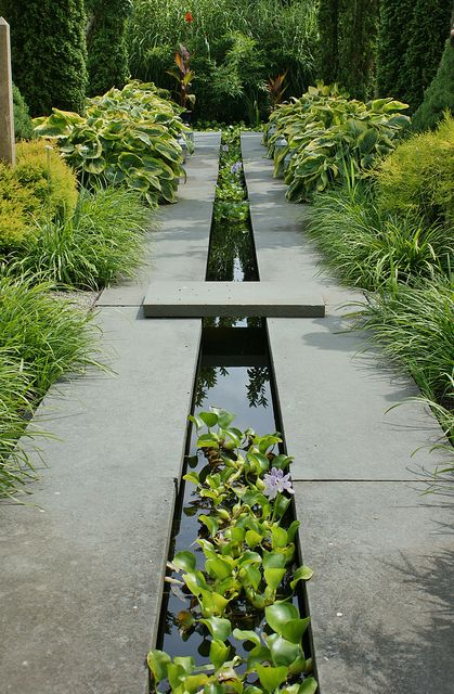 such a modern feature with dark grey stone, black water and bright green plants brings symmetry and organic textures