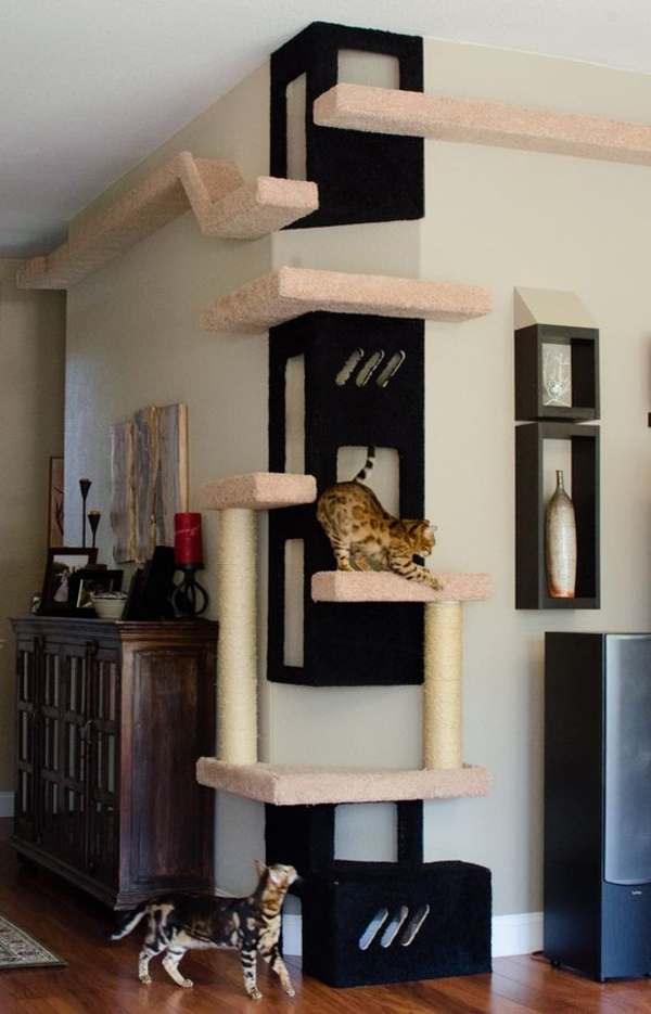 a modern cat tree of platforms and pillars and scratchers built on the walls and corner to make cats happy