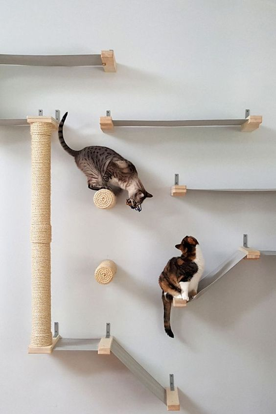 a modern cat tree or climber of fabric and jute is a fun and stylish idea that your cats will approve