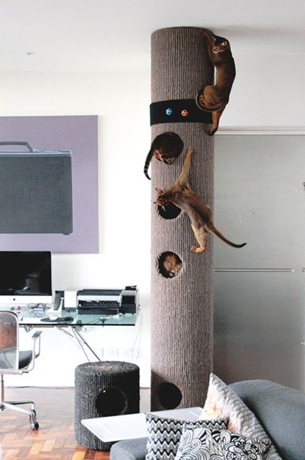 a modern cat tree that features a large pillar with holes will double as a scratcher for all your cats