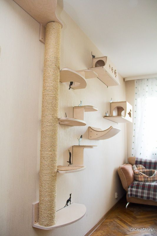 a contemporary cat climber and scratcher of plywood and jute rope built of shelves and houses attached to the wall