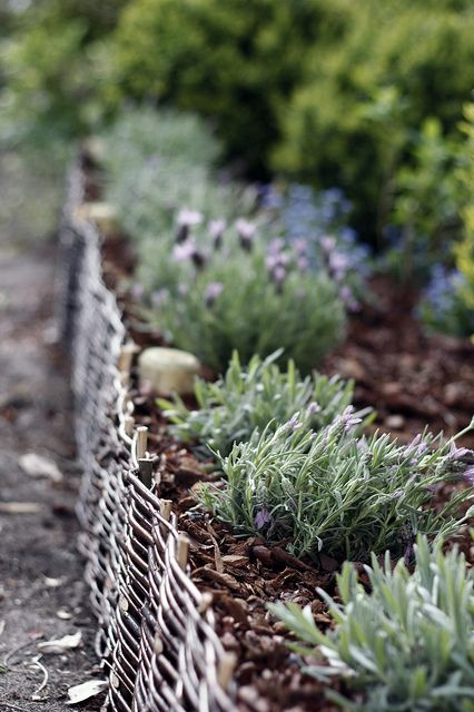 a garden bed edged with weaving look very cozy and if you whitewash the edging, it will look Scandi-like