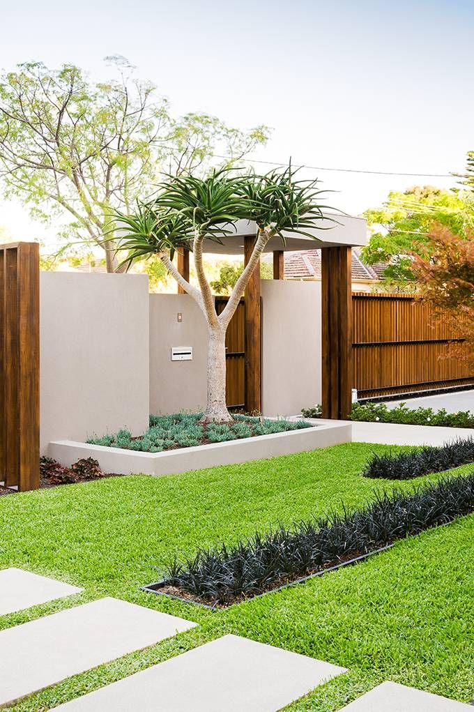 a manicured lawn, grasses, greenery and a tree with no blooms for a lacocnic and very neat look