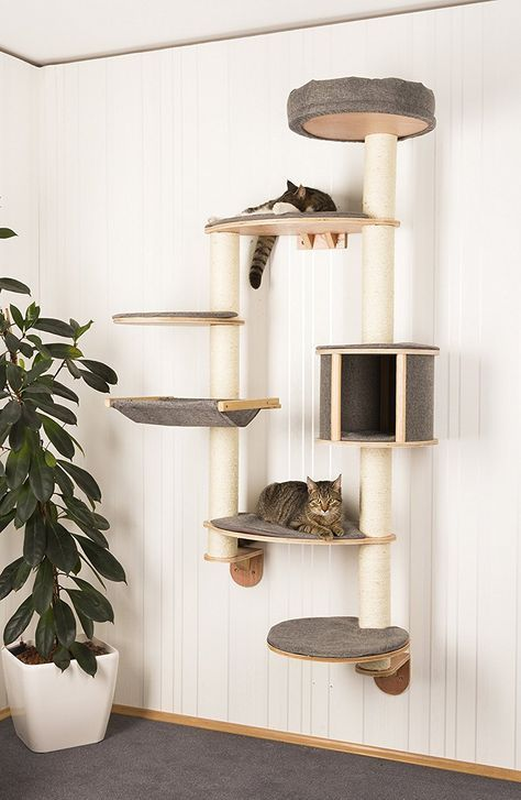 a wall-mounted cat treee of pltforms with upholstery and houses and jute covered posts to scratch them