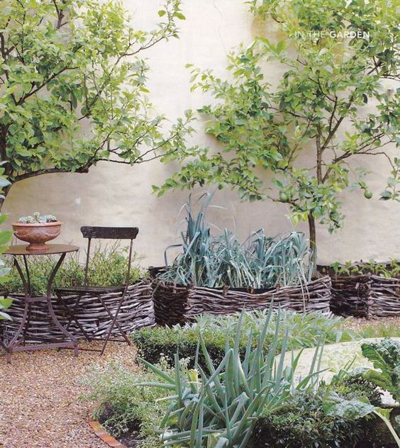 basket garden beds with various types of greenery for a chic Mediterranean-inspired garden