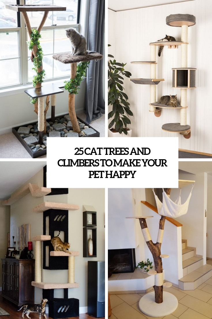 cat trees and climbers to make your pet happy cover