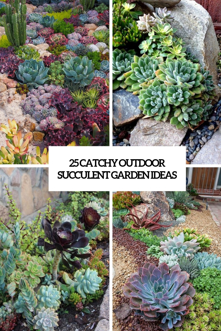 25 Catchy Outdoor Succulent Garden Ideas