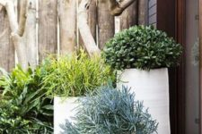 25 layer pots planted with single plants in various hues and textures to make your garden wow