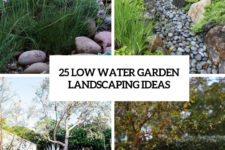 25 low water garden landscaping ideas cover