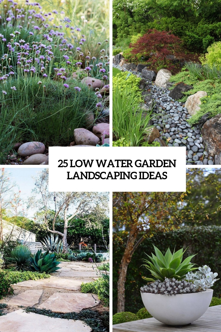 25 Low Water Garden Landscaping Ideas