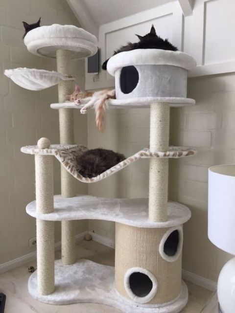 an ultra-modern cat tree with several platforms and beds, with scratcher posts and some hammocks