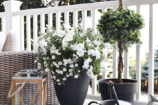 26 elegant cohesive planters with different plant, a large lantern with a candle for a summer deck