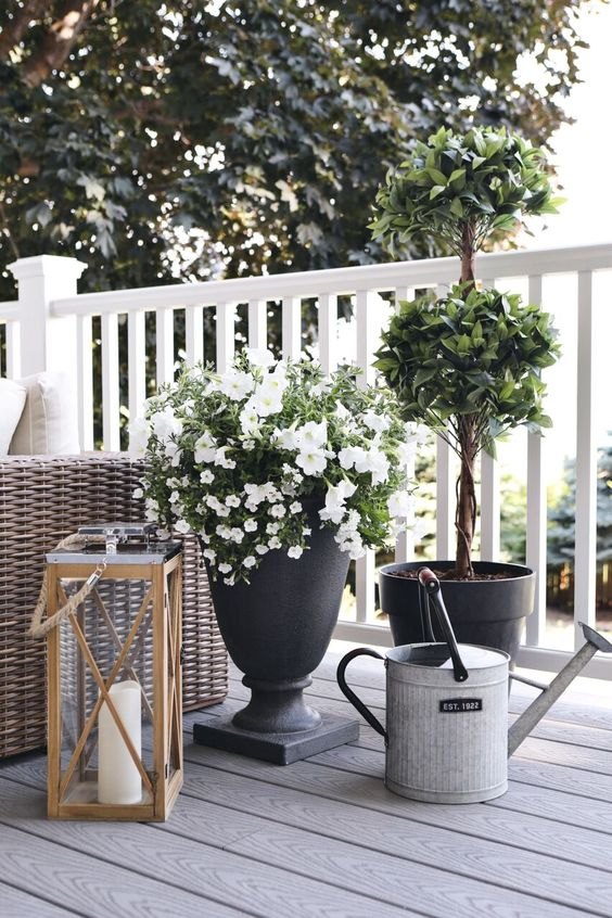 elegant cohesive planters with different plant, a large lantern with a candle for a summer deck