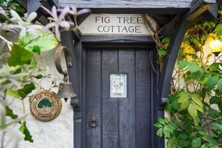 The house is located in Australia, it's called Fig Tree Cottage and is built on a mountain