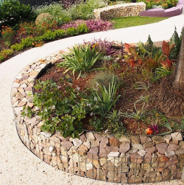 a gabion garden wall edging works as a retaining wall holding plants and soil, not only catchy edging