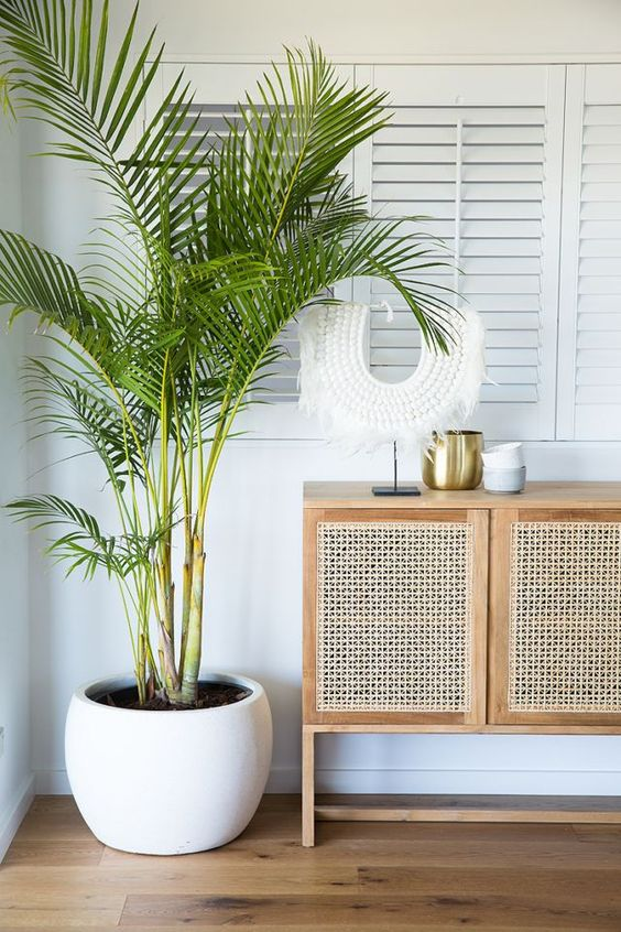 a cane console table is a cool idea for a coastal home, and cane is a hot home decor trend