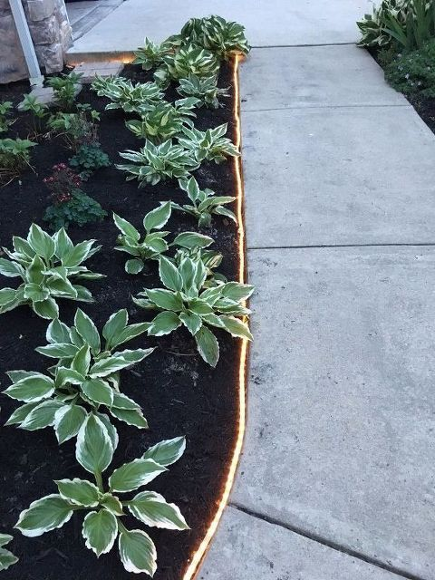 light edging is a cool idea for a modern garden - skip everything usual and go for lights