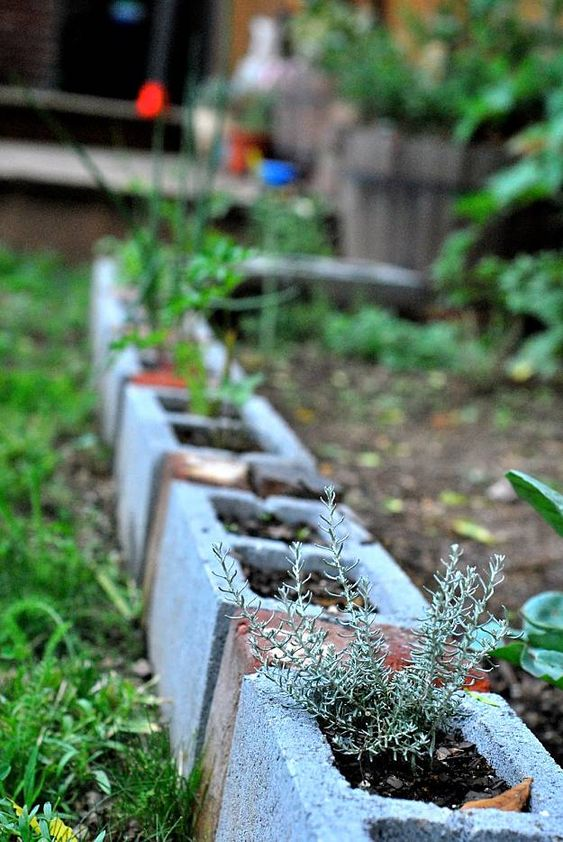 cinder block garden edging used as planters will enliven your garden even more, you may paint them or not